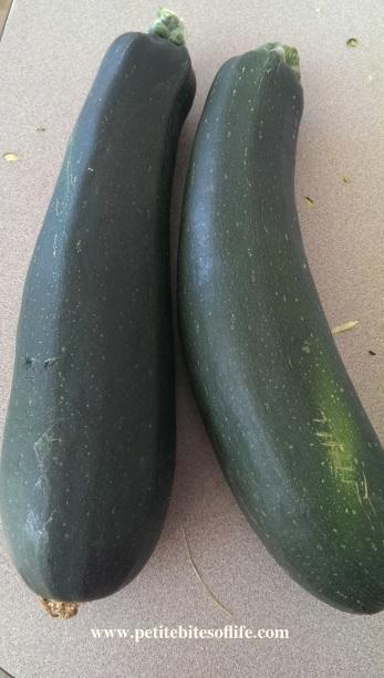 zucchini_abundance
